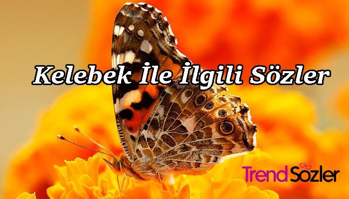 Kelebek İle İlgili Sözler